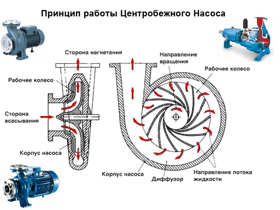 Принцип действия центробежных насосов
