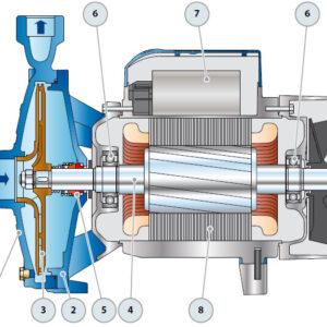 Устройство насосов pedrollo CP 160-210